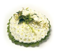 PP2  Chrysanthemum Based Posy Pad   Foliage Edge